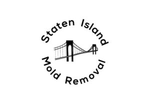 Huguenot staten island mold removal